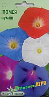 """Семена цветов Ипомея пурпурная смесь, однолетнее 1 г, """" Елітсортнасіння"""",  Украина"""