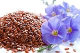 Семена льна органические, Украина, 300 г, ORGANIC COUNTRY, фото 3