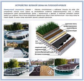 Зеленая зона на крыше: модно и экологично