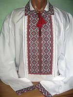 Чоловіча вишиванка (модель 46)