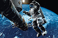 Фотообои Космонавт, 175х115 см