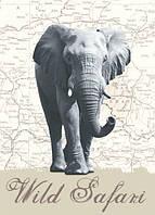 Фотообои на стену Дикое сафари, слон, 183х254 см
