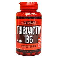 Повышение тестостерона ActivLab Tribuactiv B6 (90 caps)