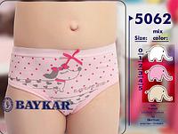 """Трусики детские для девочек """"Такса"""" ТМ Baykar, Турция оптом р.2 (110-116см)"""