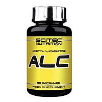Жиросжигатель Scitec Nutrition ALC (60 caps)