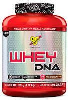 Протеин - Whey DNA - BSN - 1870 гр