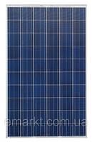 Солнечная батарея 240 Ватт 24 Вольта панель Progeny Solar поликристалл