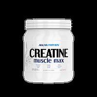 Креатин ALL Nutrition Creatine Muscle Max (500 g)