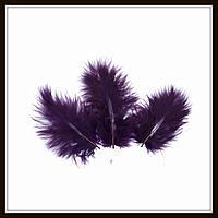 Перья натуральные фиолетовые (10 штук)