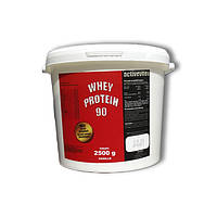 Протеин Activevites Whey Protein 90 (2.5 kg)