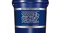 Протеин Scitec Nutrition 100% Whey Protein (5 kg)