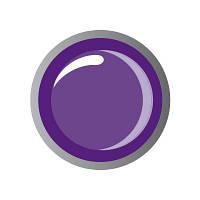 "Биогель цветной ""IRISK"" №12 Purple, 5 мл Premium Pack"