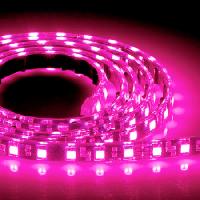 Светодиодная лента 12В 3528(60LED/м) IP20 розовая