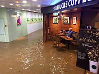 Невозмутимый китаец в затопленном кафе стал мемом