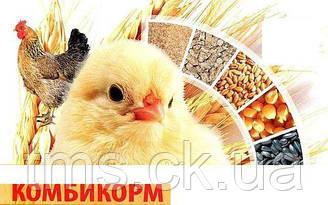 Состав и приготовление гранулированных кормов для бройлеров