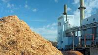 Возобновляемая энергия – биомасса