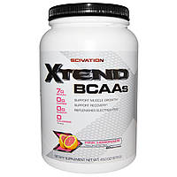 SCIVATION X-tend Large 1200g