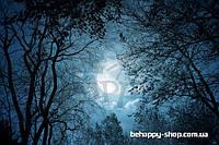 """Фотообои: """"Луна в лесу"""""""