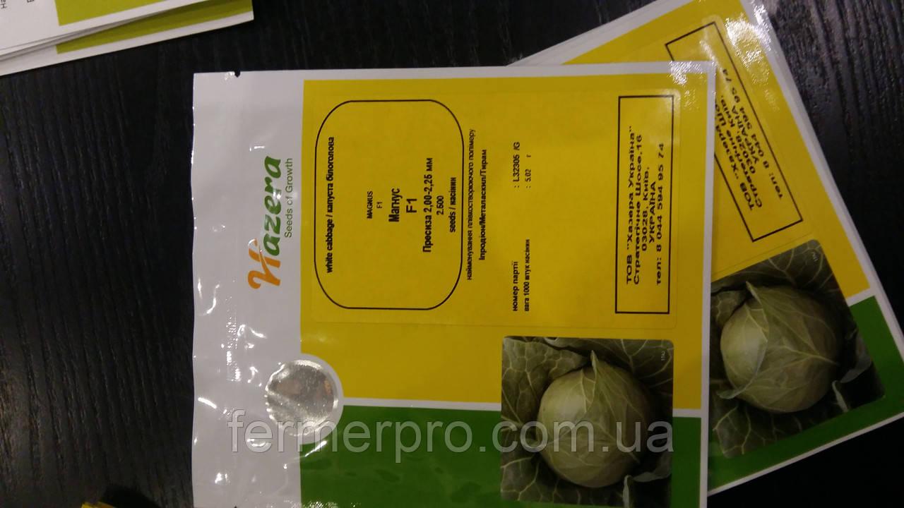Семена капусты Магнус F1 2500 калиброванные семян Hazera