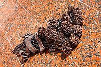 Изготовим кованые гвоздики (цветы) в Херсоне на заказ