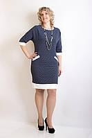 Женское полуприлигающее платье с белой отделкой, р-ры 48,50,52,54  полубаталл цвета:синий и черный