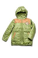 """Куртка для мальчика демисезонная """"Спорт"""" (зеленый)"""