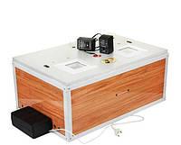 Инкубатор Курочка ряба ИБ-80 с автоматическим переворотом, ламповый, цифровой терморегулятор