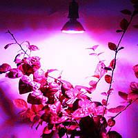 Светодиодная фито лампа для вазонов, фитолампа 60 led