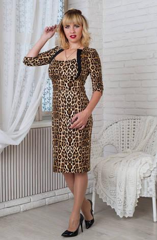 Женское строгое трикотажное платье Жаклин леопард, р.44-56, фото 2