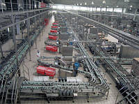 Предприятия производству молока