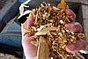 Ввод в эксплуатацию котельных на древесных отходах в г. Тлумач