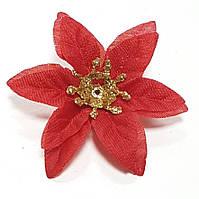 Пуансетия новогодняя мини красная