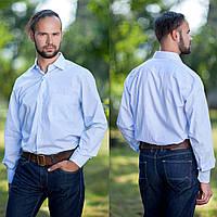 Рубашка мужская белая, в голубую полоску.Длинный рукав,классический силуэт.РазмS-XXL. Davanti.