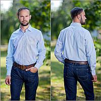 Рубашка мужская белая, в темно синюю полоску.Длинный рукав,классический силуэт.РазмS-XXL. Davanti.