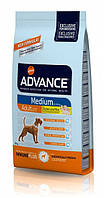 Advance Dog Medium Adult 18кг- корм для взрослых собак средних пород