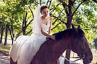 свадебный фотосъемка (свадебная фотосессия)