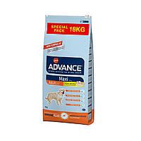 Advance Dog Maxi Adult 18кг - корм для взрослых собак крупных пород