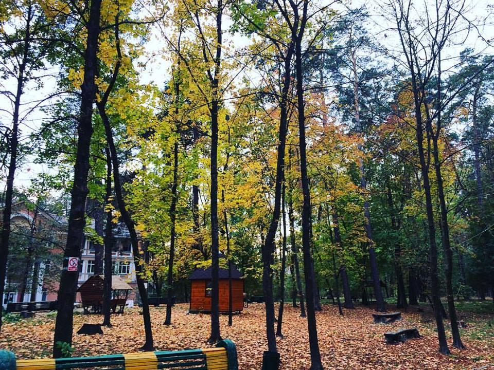 Парковая зона 43
