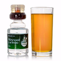 Яблочный сок с мятой 250 мл., ТМ Зеленая Сова