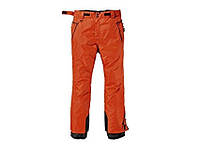 Мужские штаны для горнолыжного спорта