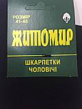 Носки мужские  с лайкрой демисезонные Житомир, фото 2