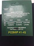 Носки мужские  с лайкрой демисезонные Житомир, фото 3
