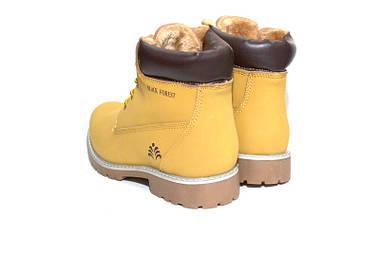 Зимние мужские ботинки Black Forest АКЦИЯ -20%, фото 2