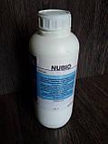 Краска для запайки среза кожи GIRBA NUBIO 1л. цвет Черный, фото 3