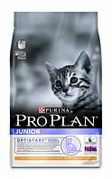 Pro Plan Junior Chicken&Rice 10кг - Сухой корм для котят с курицей