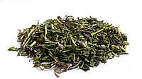 Иван-чай трава 100 грамм (кипрей, копорский чай, иванчай)