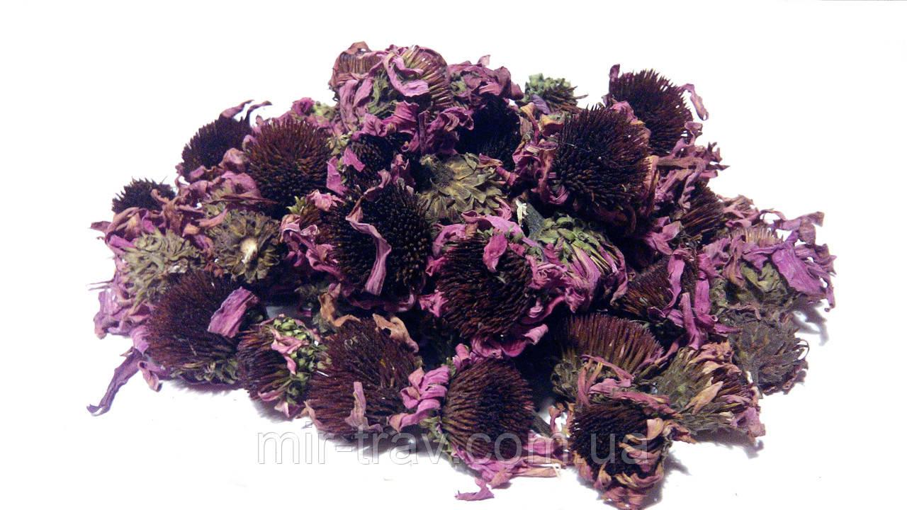Эхинацея пурпурная цветки 100 грамм - Магазин МирТрав phyto & aroma в Харькове