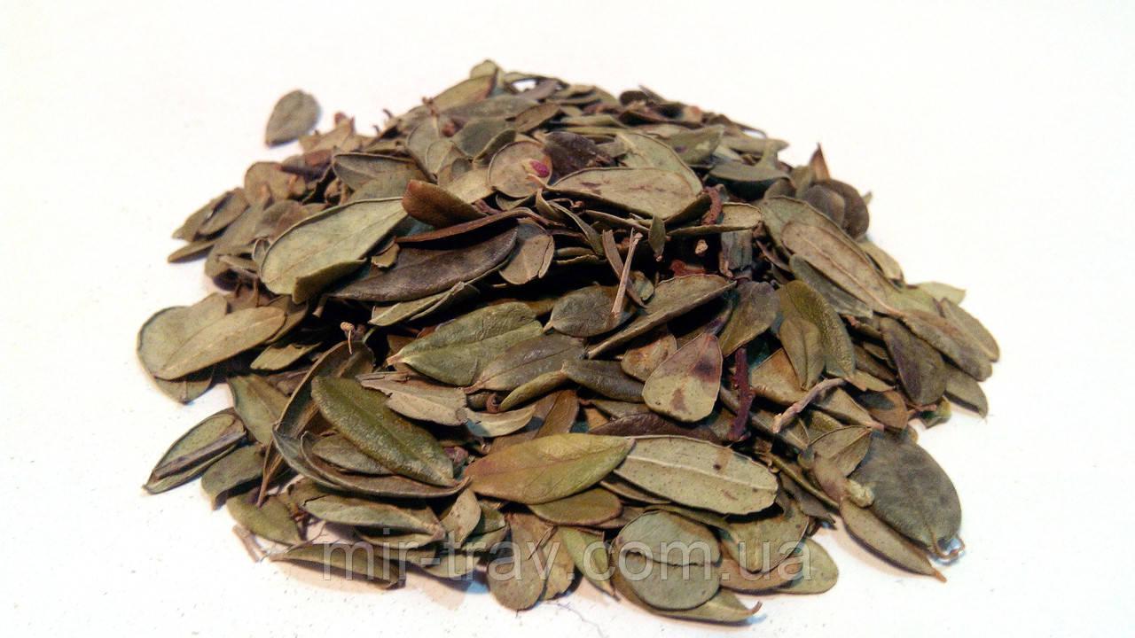 Брусника листья 100 грамм
