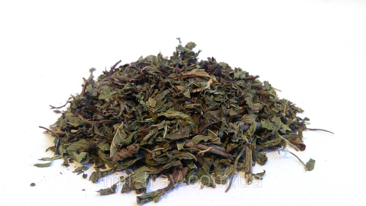 Мята перечная трава 100 грамм (мята холодная)