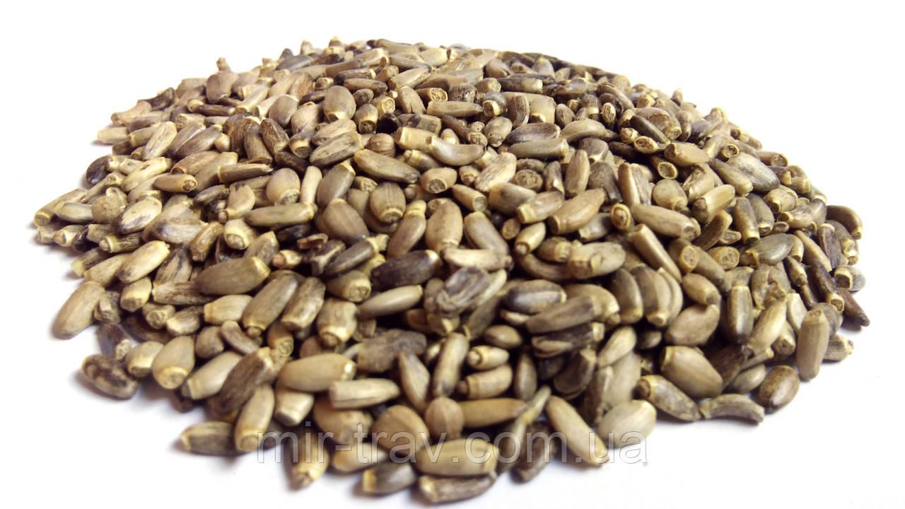 Расторопша семена 1 кг (плоды)